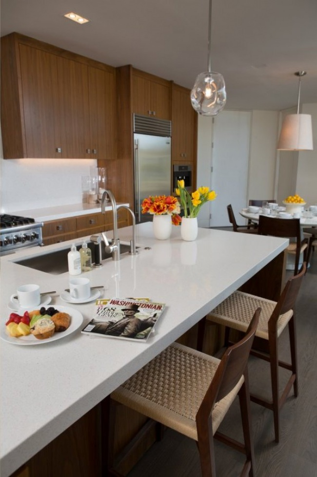 potomac-mansion-guest-house-kitchen