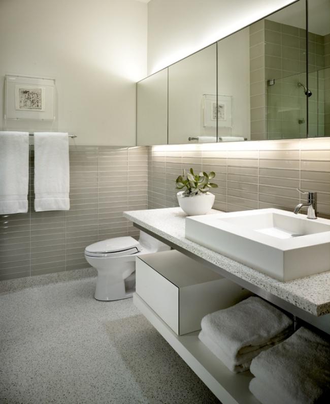 kadlec-modern-lake-guest-bath